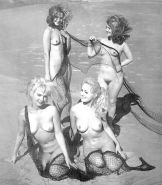 1950's and 60's Porn Pics #13479941