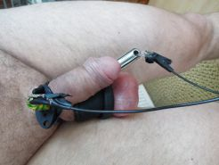 Penis plug with electrics