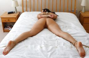 Tied to the Bed #16841216