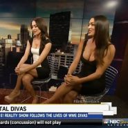Brie and Nikki, the Bella Twins - WWE Diva mega collection