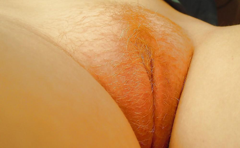 Hairy redhead Porn Pics #2410367