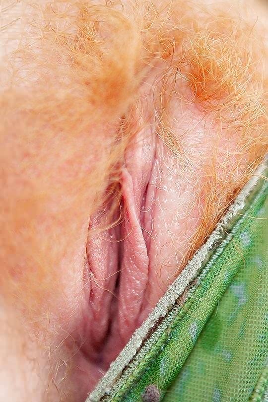 Hairy redhead Porn Pics #2410498