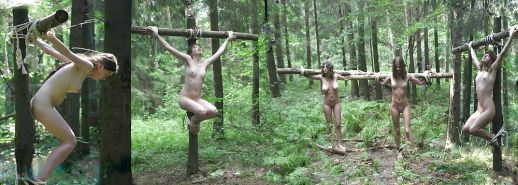 BDSM institute crucified