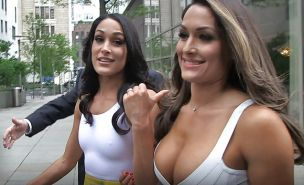 The Bella Twins (Nikki and Brie) WWE Divas mega collection 2