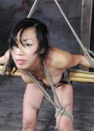 New BDSM pictures ,Breast bondage, HogTied,Slave girls #4073431