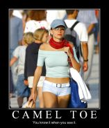From the Moshe Files: Camel Toe Humour