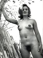 Vintage women with hairy armpits #40253193