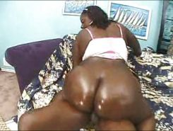 Big black BBW oily ass