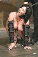 BDSM Pet Play #25514398