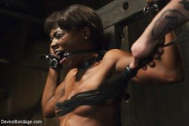 Ana Foxxx ebony babe is bound with leather straps and made to orgasm