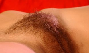Hairy pussy gfs posing and fucking #67195400