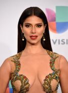 Roselyn Sanchez busty and seethru to panties at 15th Annual Latin GRAMMY Awards