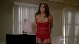 Teri Hatcher looking very sexy in stockings and lingerie and in bikini on beach