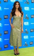 Busty Roselyn Sanchez wearing a low cut dress at the 2013 Do Something Awards
