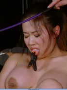 Japanese fetishmodel and bdsm masochist Tigerr Benson in busty breast whipping a