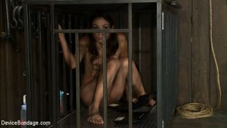 Jade Indica and Amber Rayne wall bound upside down to machines